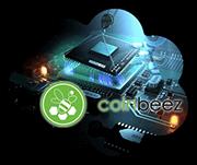Получение бесплатного рабочего статуса на Coinbeez