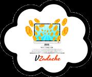 Заработок с VZadache