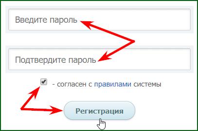 установка пароля и завершение регистрации на WMRFast