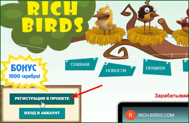Регистрация в игре Rich Birds шаг 1